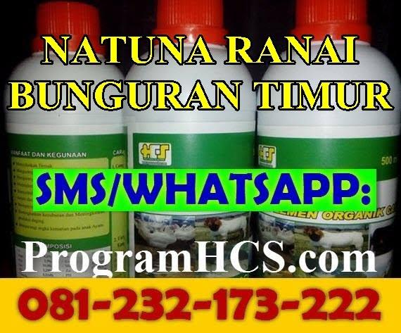 Jual SOC HCS Natuna Ranai Bunguran Timur