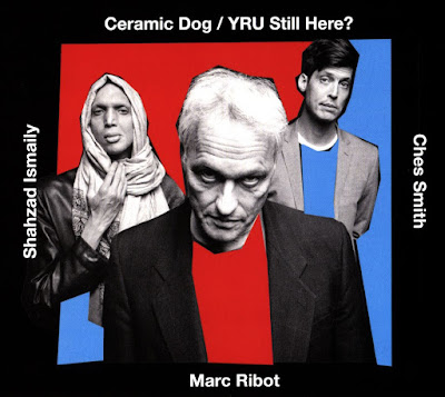 Marc Ribot, hardcore, punk, funk, alt rock