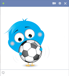 Soccer ball bird icon