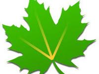 Greenify Donate v3.6.1 Final Patched Full Version Gratis