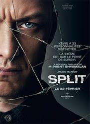 Fragmentado / Múltiple (Split)