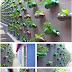 Platic Bottle Vertical Herb Garden