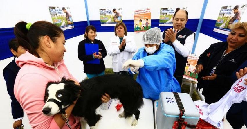 VAN CAN 2019: Sepa dónde vacunar a su mascota contra la rabia este sábado y domingo