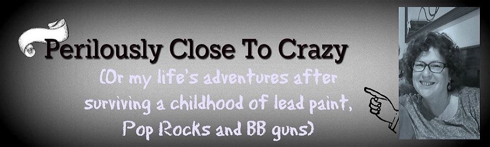 Perilously Close To Crazy (or survival after a childhood of lead paint, Pop Rocks & BB guns)