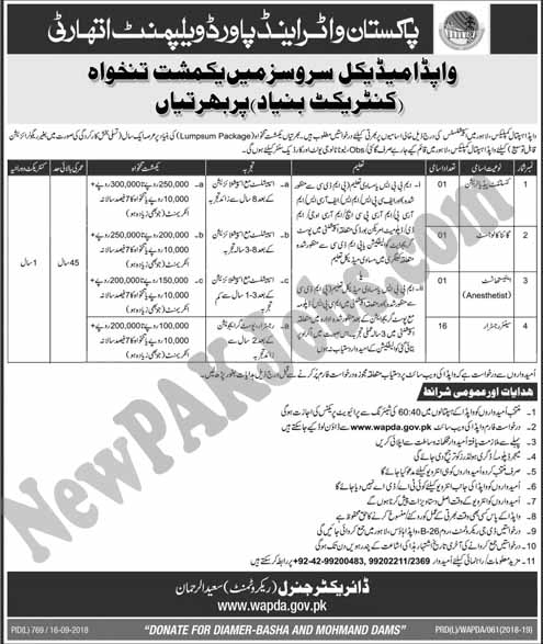 Latest Jobs in Wapda Medical Services Department  September 2018