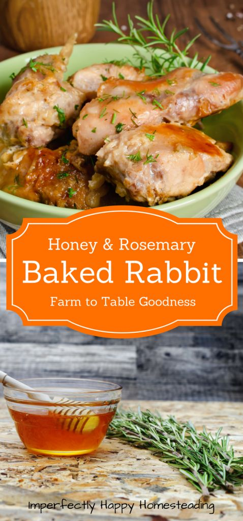 EASY TO MAKE HONEY ROSEMARY BAKED RABBIT RECIPE