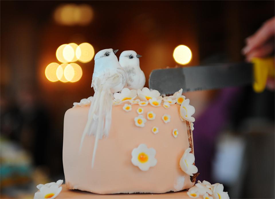 Steffi S Hochzeitsblog Hochzeitstorte Selbermachen Fur Dummies Teil I