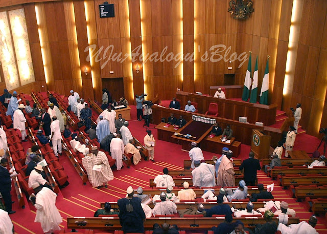 How senators stripped executive of lawmaking power, endorsed independent candidature
