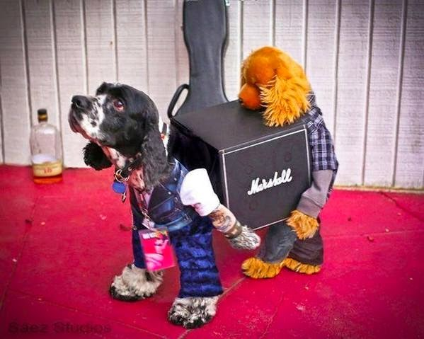 Funny Musician Band Dogs Carrying Guitar Amp Gear Costume