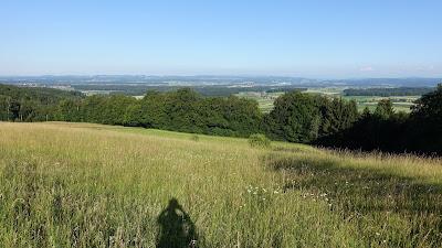 Blick vom Bucheggberg Richtung Burgdorf