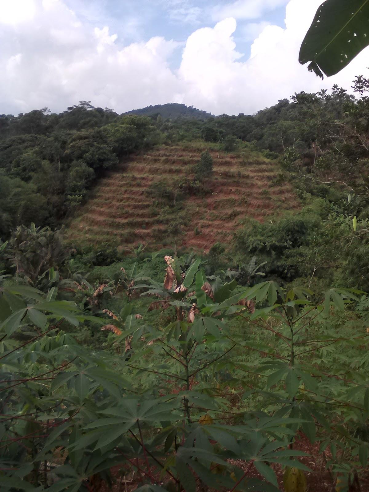 Zona Subang Eigendom Verponding
