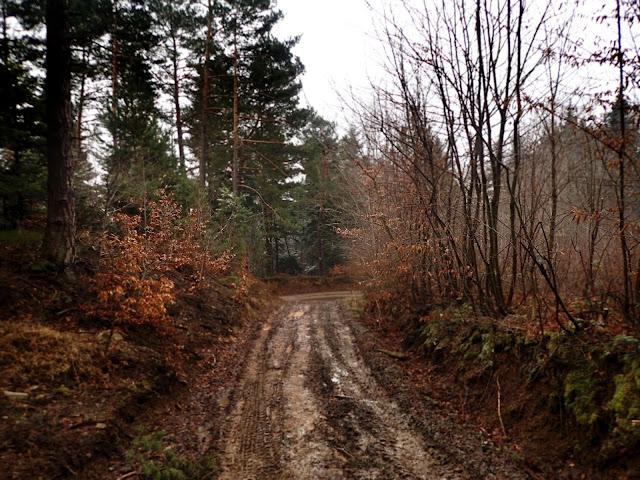Szlak Szczyrzyc-Ciecień
