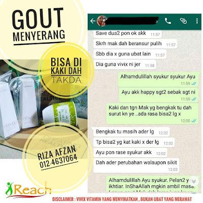 Uric acid gout Vivix resveratrol
