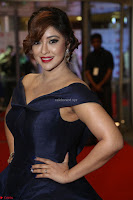 Payal Ghosh aka Harika in Dark Blue Deep Neck Sleeveless Gown at 64th Jio Filmfare Awards South 2017 ~  Exclusive 142.JPG