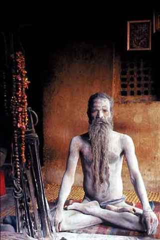 Ascète hindou