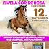 II Cavalgada Feminina do Grupo Fivela Cor de Rosa, no município de Baixa Grande