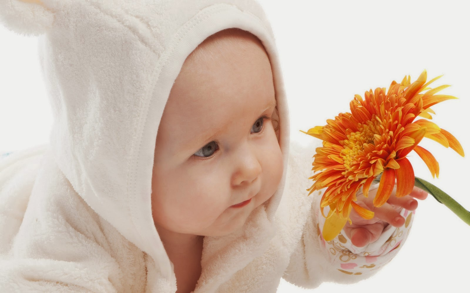 Cute Baby Wallpapers Latest: HD WALLPAPER GALLERY: Cute Kids Wallpaper