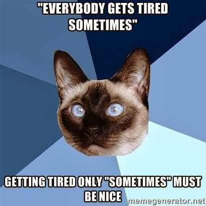 "Cat picture with captions: Everybody gets tired sometimes, getting tired only ""sometimes"" must be nice"