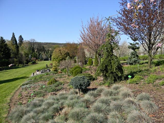 Arboretum w Wojsławicach jest bardzo gustownie urządzone.