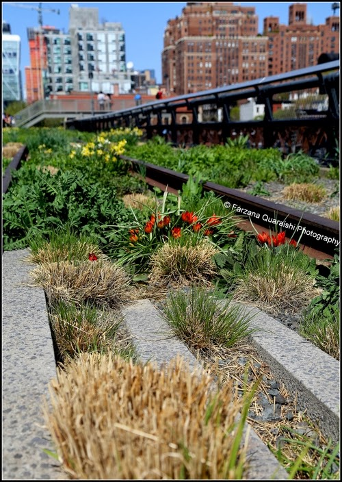 18-High-Line-Park-New-York-City-Manhattan-West-Side-Gansevoort-Street-34th-Street-www-designstack-co