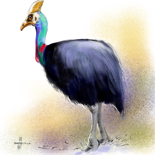 Southern cassowary bird painting by Artmagenta