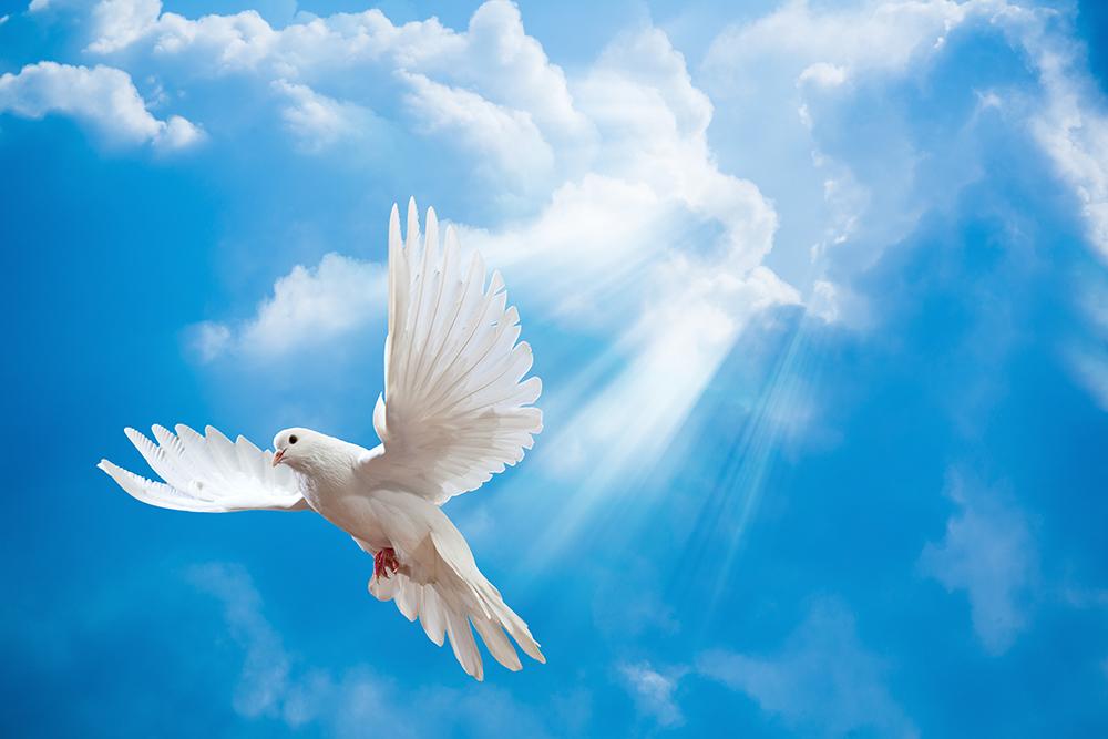 Armonia Espiritual: Y El Espíritu Santo....¿Quién Es?