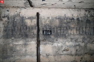 Второй немецкий бункер. Номер '164'