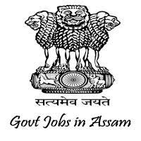 5393 Assistant Teacher Job Vacancies in DEE 2018
