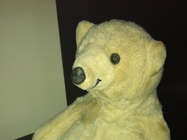The Famous Snowy Bear
