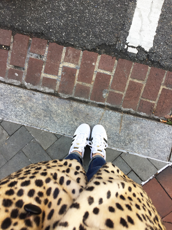 Naturally Me, Georgetown, DC, Street Style, How to Wear Adidas Superstar Sneakers, Adidas Sneakers, Leopard Coat, How to Wear a Leopard Coat