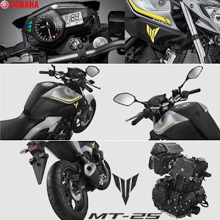 Fitur dan Spesifikasi Yamaha MT 25