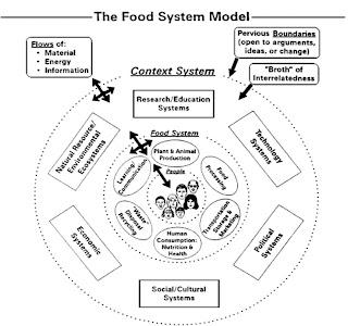 Beyond Bread: Building movement toward a nourishing D.C.