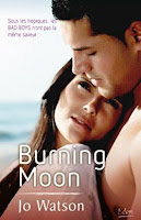 http://lachroniquedespassions.blogspot.fr/2016/10/destination-love-tome-1-burning-moon-de.html#links