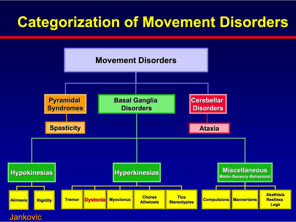 Find a Neurologist