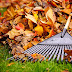 Fall Energy-Saving Tips