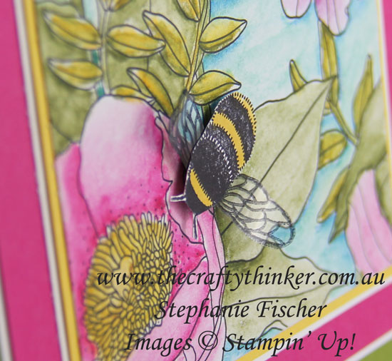 #thecraftythinker, Stampin' Up, Sale-A-Bration, Occasions Catalogue Sneak Peek, Inside the Lines, Dragonfly Dreams, Stampin Up Australia Demonstrator, Stephanie Fischer, Sydney NSW