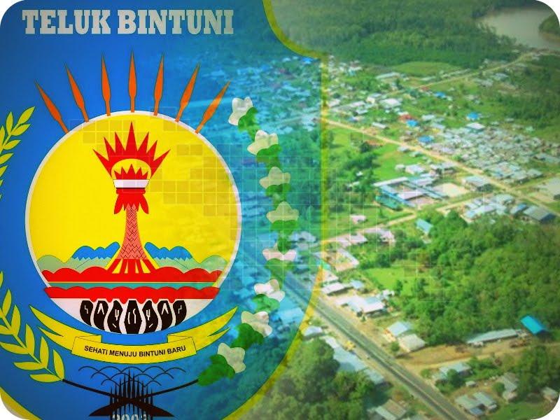 Kabupaten Teluk Bintuni Diwajibkan Miliki Pelabuhan Laut Papuaus Papua Untuk Semua Informasi Berita Harian Papua Yang Terbaru