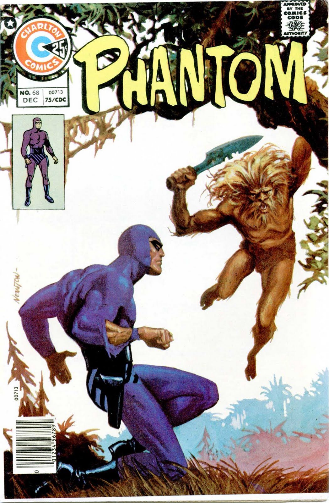 The Phantom v2 #68 charlton comic book cover art by Don Newton