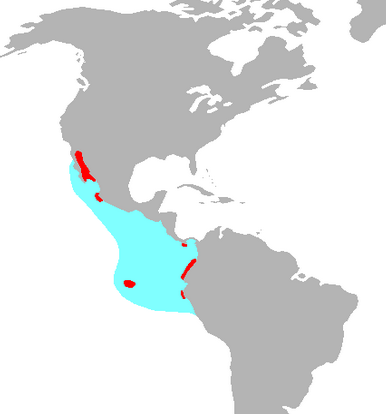 Map showing the distribution of the blue footed booby