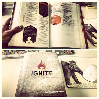 Ignite: The Bible For Teens