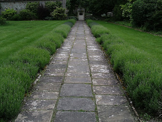 Lavender lined path at Avebury Manor Wiltshire Green Fingered Blog