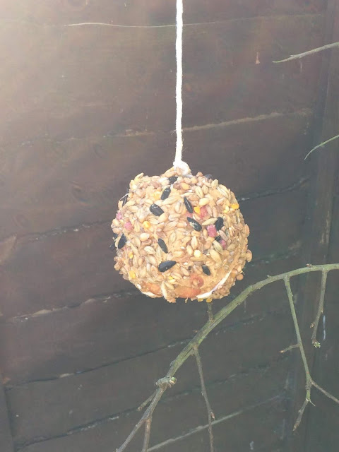 Apple coated in peanut butter and bird seed, tied up with string
