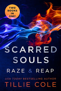 https://www.goodreads.com/book/show/25857828-scarred-souls