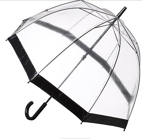 see through umbrella