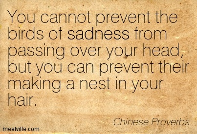You cannot prevent the birds of sadness from passing over your head, but you can prevent their making a nest in your hair - 10 Chinese Proverbs that Will Upgrade Your Perspective