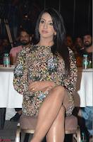Sanjjanaa Galrani Rogue Movie Audio Launch 009.JPG