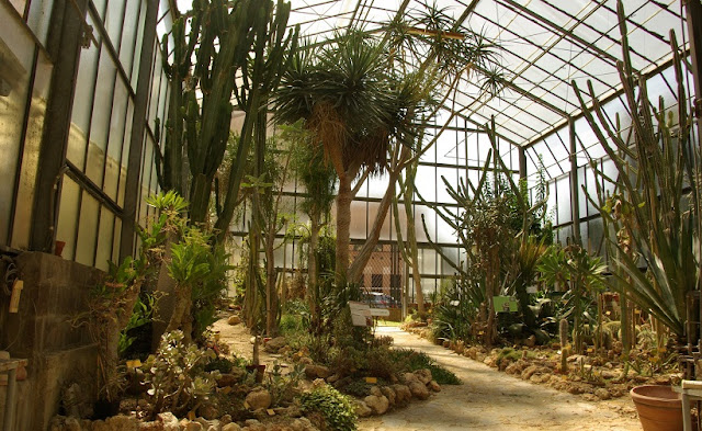 Sobre o Orto Botânico dell'Universitá di Siena