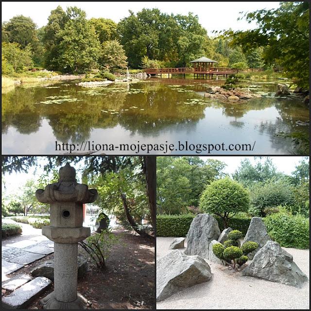 Zapraszam do Ogrodu Japońskiego we Wrocławiu.