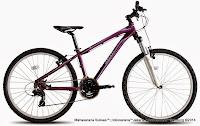 Sepeda Gunung Wanita Polygon Cleo 1.0 26 Inci
