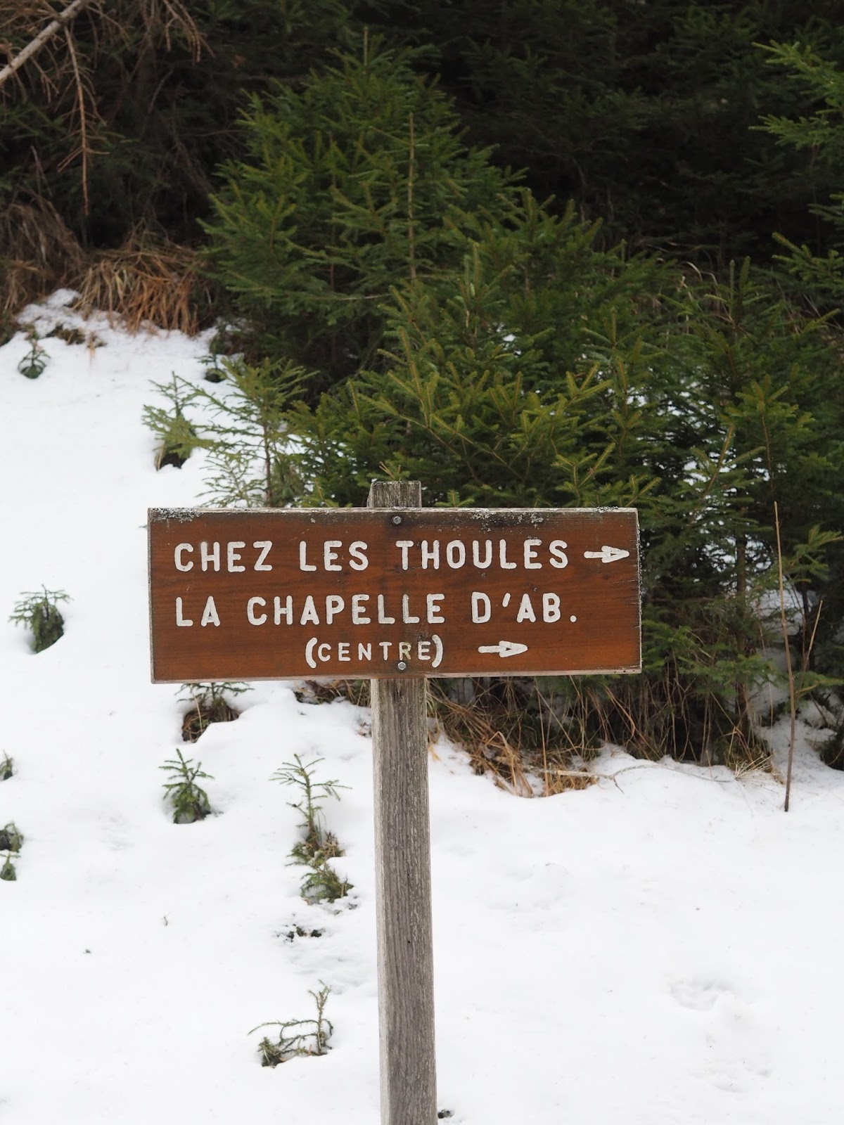 La Chapelle France review travel ski French Alps Priceless Life of Mine Over 40 lifestyle blog